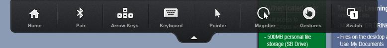 Citrix Receiver Toolbar Shown