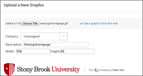 Creating a Mail Merge Using Qualtrics   Division of Information