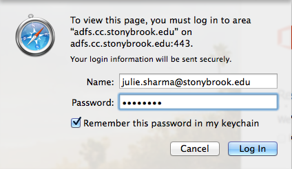 Safari authentication showing EPO (SBU email address), password, and remember this password in keychain checked